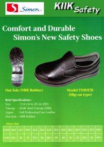 Catalog_simon TS3017 R