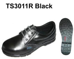 TS 3011R