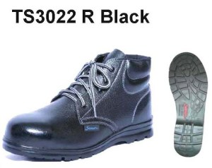 TS3022R.