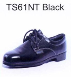 TS61NT