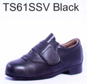 TS61SSV